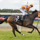 Weaponry, ridden by Dylan Turner, secures the Southland Guineas for the powerful Te Akau stable...