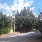 PowerNet power lines surround power lines in Strode Ave, Naseby. A Naseby resident is worried the...