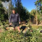 Alexandra Bridge Hill resident Geoff McHardy looks over a tree he believes Aurora Energy claims...