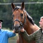 Top Australian Horse trainer Mick Price, left, and Jason Coutts with Prince Of Brooklyn at...