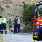 Firefighters at the scene of a scrub fire near Queenstown. Photo: Paul Taylor