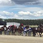The field during one of 11 races during the Omakau Trotting Cup in January. PHOTO: PAM JONES