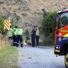 Firefighters at the scene of a Queenstown blaze they believe was started by a  a fleeing driver....