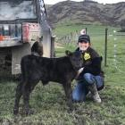Kate McCallum with one of her young Angus animals. Rockley Stud focuses on selling bulls as...