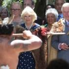 Prince Charles and the Duchess of Cornwall while in New Zealand in 2015. Photo: NZ Herald