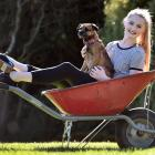 Victorian State Ballet dancer Rebecca Murray puts her feet up with Twig, the family dog, during...
