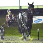 Sheree Tomlinson returns to scale after driving her 100th winner in New Zealand with Hurricane...