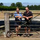 Duncan and Tina Mackintosh, of White Rock, north of Rangiora, have been recognised for their...