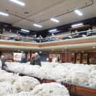 For the past two years, the Golden Fleece competition has been held in Wanaka - this year it...