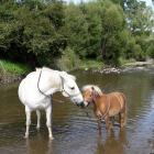 Star (right) in happier times. Photo: Supplied