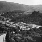 Woodhaugh, in the Leith Valley, Dunedin. - Otago Witness, 16.4.1919.
