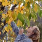 University of Otago student Alice Ritter von Marx (22) makes the most of the remaining autumn...