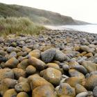 Boulder Beach on the Otago coast. Photo: John Barkla
