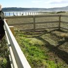 Parks officer Sarah Kilduff by an enclosed area of native turf field at Lawyers Head. Photos:...