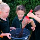 Green Island School pupils (from left) Zaria Mansell, Lena Walker and Cooper McInnes (all 7) sift...