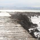 As waves crash into Oamaru's breakwater, work is scheduled to begin on another round of...