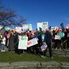Dozens of teachers on strike in Queenstown CBD this morning. Photo: Joshua Walton