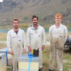 Tending to hives between Cromwell and Alexandra last week are apiarists from Alpine Honey, Hawea,...