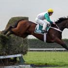 Tai Ho and jockey Stuart Higgins clear the water jump on their way to victory in the Great...