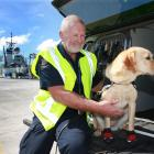 Alan Willox, head detection dog handler at the Ministry for Primary Industries, with dog Georgie...