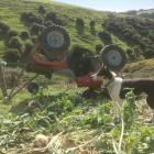 Hillend farmer Douglas Jack's dog, Mindy, watches over her owner's ATV after it rolled in April...