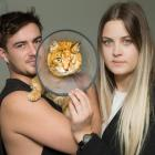 Cody Hayton and Emilia Petronelli have paid more than $2500 in vet bills to treat Riko, who was...