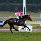 Come Fly With Me, in the hands of jockey Lisa Allpress, wins at the corresponding June meeting...