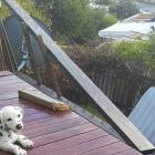 A Coopers Beach resident lost her deck railing and her neighbour's roof was ripped off in the...