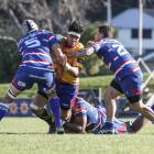 North Otago lock Anthony Amato on the charge against Horowhenua-Kapiti in their Heartland...