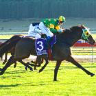 Londonderry Air wins the Fred Muir Memorial over Lady Bealey and Princess El Jay (both obscured)...