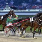 Levels trainer Donna Williamson scores her first race quinella at Forbury Park last night as...