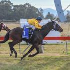 Pippi Rae races away to score at Waimate yesterday. Photo: Wild Range Photography