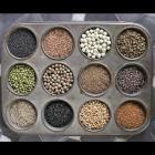 An assortment of microgreen seeds.