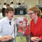 Year 11 James Hargest College pupil Darcy Herrick (15) and University of Otago neuroscience...