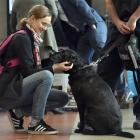 Student Shaniya Allan (21) pats a sniffer dog at the inaugural Humanities Career Week, at Otago...