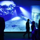 "Inside the ""Challenging the Deep"" exhibition, from environmentalist and film-maker James Cameron...."