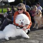 Julie Fawcett and her dog Angel-Louise (front), flanked by other dog owners and their pets in...