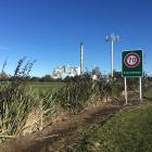 Fonterra's Clandeboye plant is believed to be the biggest burner of coal in Canterbury. Photo:...