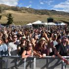 The crowd at Rhythm & Alps.