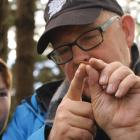 IMG 0136 – Year 8 Hamish Mann and Ruud Kleinpaste looking at a predatory rove grub (larva of a...