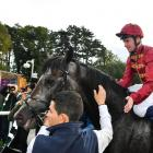 Jockey Oisin Murphy on Roaring Lion on Irish Champions Stakes Day in Dublin in September last...