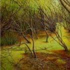 Climb Inside My Iris, by Hannah Joynt