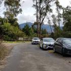 Police cars near the scene where a body was discovered. Photo: Ryan Gray via NZME.