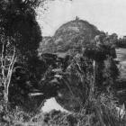 """The Scotsman's Bonnet'', Owaka Valley, Otago. - Otago Witness, 20.8.1919."