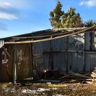 A decrepit boat shed at Lake Waihola near where Jill Huemmer said she cut her leg on submerged...