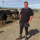 Dairy farmer Dean Alexander, of Lochiel, uses a feed, calving and wintering pad, to improve...