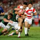 The Springboks were happy to make plenty of tackles against Japan. Photo: Reuters
