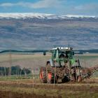 The first of 7500 cherry trees are planted at Hortinvest's Lindis River project. The project is...
