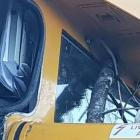 The fallen tree damaged the train for the early morning service. Photo: Supplied via NZ Herald