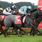 Emily Margaret is one of several smart gallopers who will open their spring campaigns at...